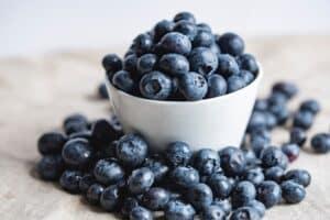 paleo diet food list - blueberries
