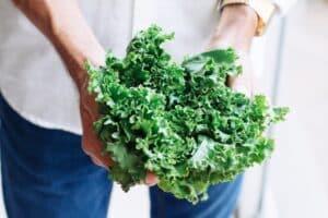 paleo diet food list - kale