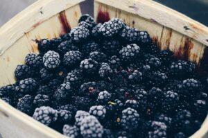 1300 calorie Paleo meal plan - blackberry