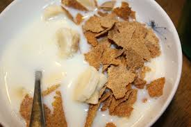 1200 calorie pre-bariatric surgery diet - Bran flakes with skimmed milk