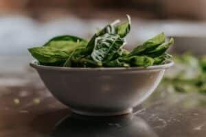 1600 calorie vegetarian meal plan